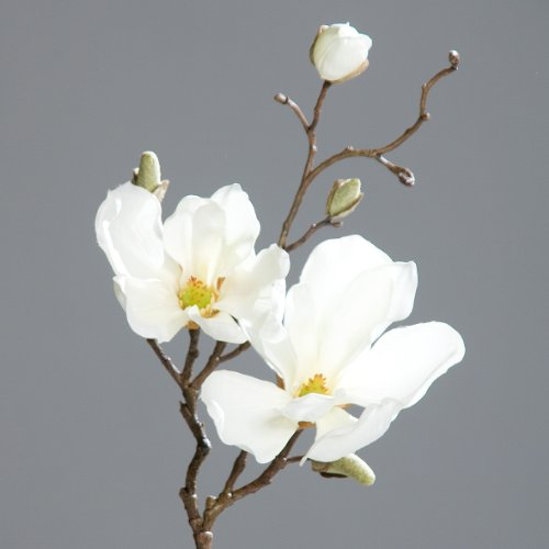 Magnolienzweig Kunstblume creme 50cm