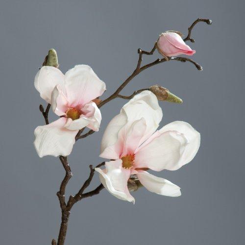 Magnolienzweig Kunstblume creme-pink 50cm