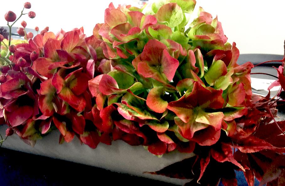 Herbst Hortensien Deko Jahreszeiten